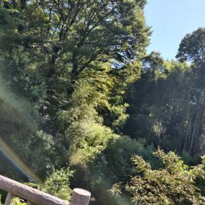 10月【ヒーリングさんぽ&空想あそびゑ】13(水)or14(木)