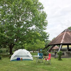 念願のデイキャンプ
