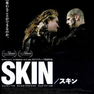 SKIN / スキン