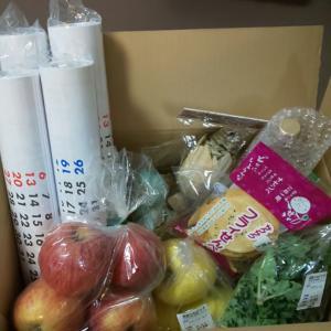 カレンダーと珍しいお野菜!