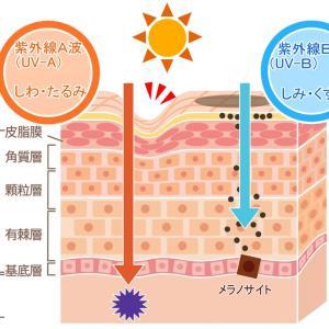 あなたの紫外線対策十分ですか??