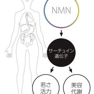 NMN点滴療法導入しました