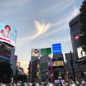 渋谷の空に鳳凰雲