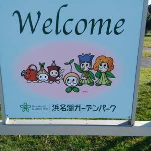 let's 浜名湖