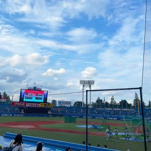 神宮球場で野球観戦