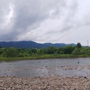 赤川のアユ釣り事情 釣れ始めた でもダムは要らないね