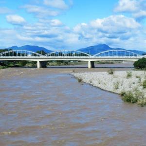 台風19号の大雨で「はんらん危険水位」を超えた利根川を渡って、キンモクセイの開花に出会い、総社神社では七五三詣を…