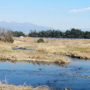 伊勢崎市民病院まで桃ノ木川から広瀬川を下ってきたのですが、写真なしです。お詫びに、「第1回やまたけ素人落語会」と「第2回ぐんコミ」のご案内をします。