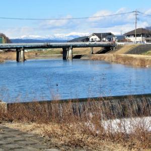 穏やかな冬の日、桃ノ木川のカモたちと遊んで、ヤギカフェから持ち帰りランチを楽しんでたら、緊急事態宣言が追加され…