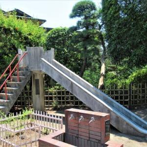 昨日も涼をとらせてもらった三河町の隆興寺の滑り台をご覧ください、暑い暑いで一日が過ぎちゃいました