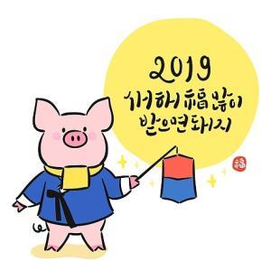 2019 년 돼지년