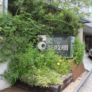 癒しのオシャレ旅館!道後温泉の宿・茶玻瑠に宿泊|口コミや評判は?