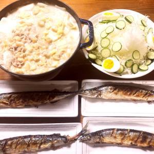 最近の晩御飯とコストコレポ(アメリカ産リブフィンガー、ジェルボール、スコッチブライトスポンジ)