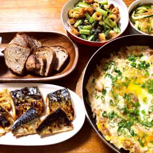 昨日の晩御飯とコストコレポ(塩さばフィレ)、わっぱ弁当