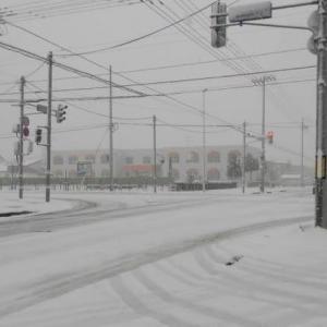 旭川は雪・雪・雪。「旭町通り」沿いの雪景色