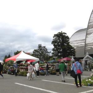 「花フェスタ2019旭川」に行ってきました♪