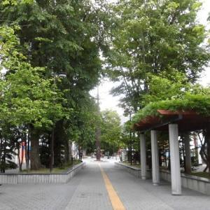 七条緑道・あべ弘士さんの「エゾオオカミ物語」モニュメント見てきました。