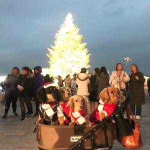 横浜赤レンガ倉庫☆クリスマスマーケット