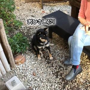 鎌倉に行ってきました。いつものカフェで・・・。