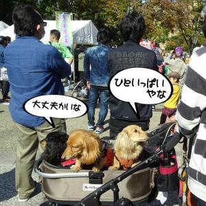 久しぶりに横浜さんぽしてきました。