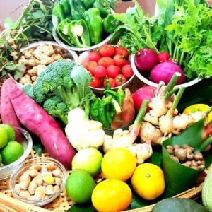 10月料理教室の野菜たち