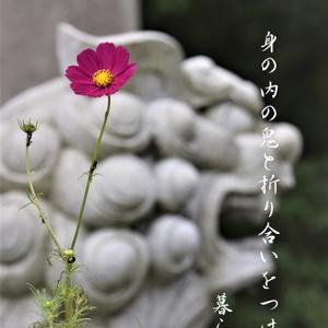 10月  銀座フォト句会