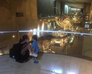 23日~27日出勤カレンダー&恐竜博物館