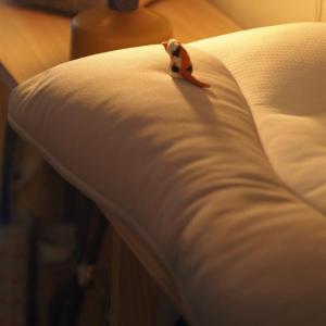 ▽人生の三分の一は眠りです