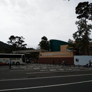 札幌を味わう 円山動物園