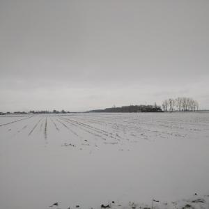 はじめての雪国生活は 発見がたくさん