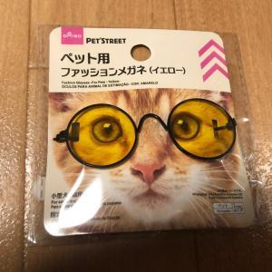 ペット用ファッションメガネ