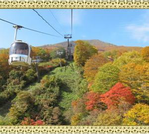新潟(Niigata)観光:宿泊japanese sightseeing information