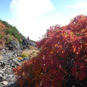 日本百名山 乗鞍岳 (3,025.6M)   谷川登山道を下る NO1