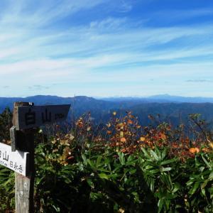 紅葉が始まった 高賀山 (1,224.2M)  ピックアップ編