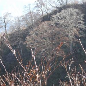 みのハイキングクラブ登山 赤摩木古山 (1,501M)   登頂・下山編