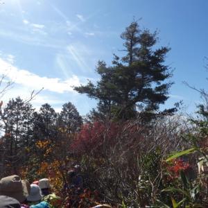 久しぶりに登った 日永岳 (1,215.8M)   下山 編
