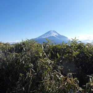 正月登山 竜ヶ岳 (1,485M)     下山 編