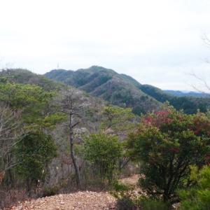 各務野自然遺産の森から 迫間城跡  登頂 編