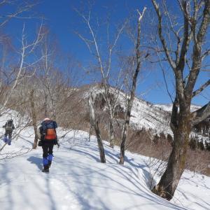 快晴のち雪の 薙刀山 (1,647.2M)   登頂 編  NO2