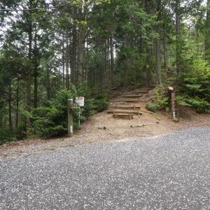 山つつじ咲く尾根を散策 文殊の森公園