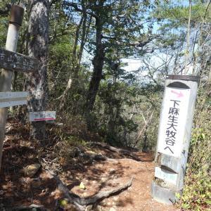 花の登山道を下る 納古山 (632.9M)     下山 編