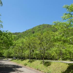 花の八木山 (296M)    登頂 編    part 1