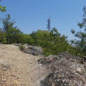 花の明王山 (380M)    登頂・下山 編 part 2