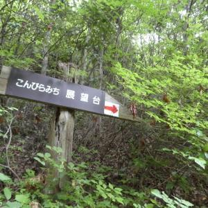 花の明王山 (380M)   金比羅山 編 pray 1