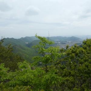 花の芥見権現山  (316.5M)   山頂・下山 編