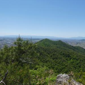花の八木山 (296M)    下山 編