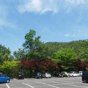 あじさい咲く 高木山 (344M)   みのかも健康の森 編 part 1