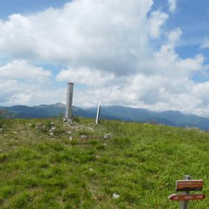 レンゲツツジ咲く 車山高原 (1,924.7M)  北の耳 編