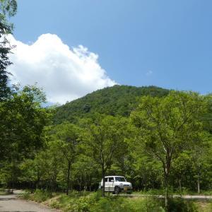 暑かった 八木山 (296M)  ・ 愛宕山 (268.5M)   登頂 編