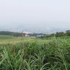 日本百名山 伊吹山 (1,377.3M)   ピックアップ編